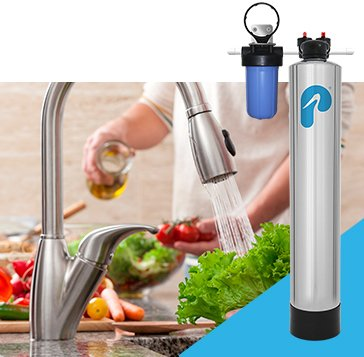 Whole House Carbon Series Water Filter